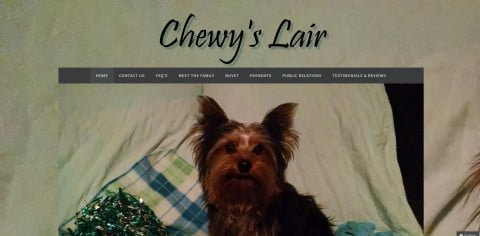 Chewy's Lair